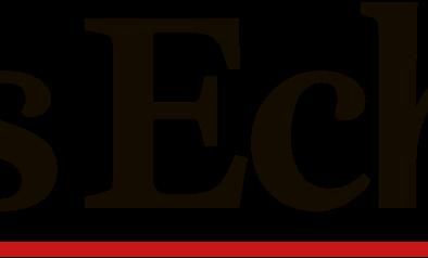 actu-logo-Les_echos