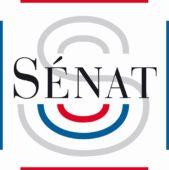Thibault de MONTBRIAL entendu au Sénat par la commission d'enquête sur les forces de sécurité intérieure