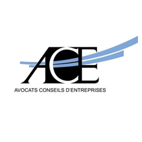 Intervention de Thibault de MONTBRIAL au colloque ACE AVOCATS sur le recours contre les autorisations d'urbanisme, aspects pénaux