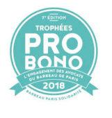 Notre équipe participe aux Trophées Pro Bono: notre engagement dans la lutte contre le terrorisme Juillet 2018, Barreau de Paris Solidarité