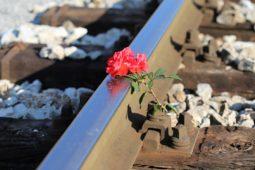 Catastrophe de Brétigny-sur-Orge: la SNCF et un cheminot jugés en 2022